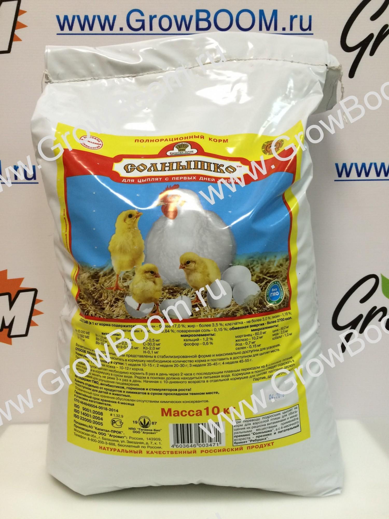 Корм для цыплят с первого дня своими руками