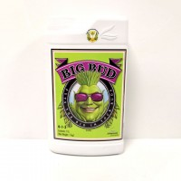 Стимулятор Big Bud Advanced Nutrients
